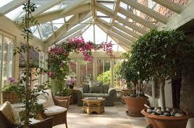 indoor plant arrangements top tips for arranging indoor plants