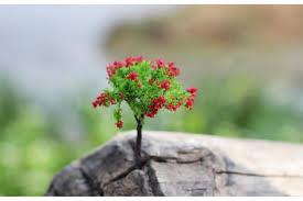 2016 mini tree figurines diy succulents terrarium micro