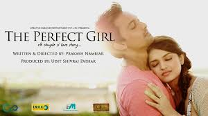 movie review the perfect small movie big heart chai