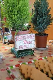 cut your own christmas tree from scratch with maria provenzano