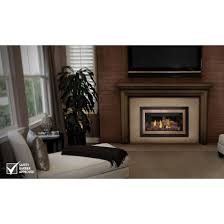 Direct Vent Fireplace Insert by Napoleon Inspiration Gdicz Direct Vent Gas Insert