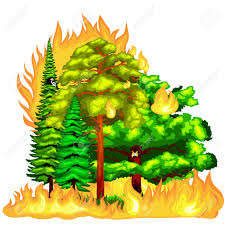 Wild Fire Danger by Forest Fire Fire In Forest Landscape Damage Nature Ecology