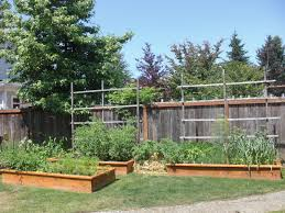 garden design garden design with ideas about tomato trellis on