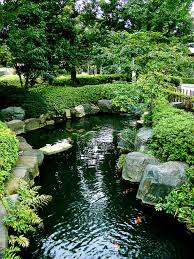 how to build a backyard koi pond the garden and patio home guide