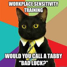 Training Meme - workplace sensitivity training cat meme cat planet cat planet