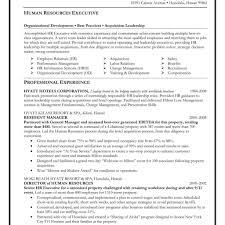 sle executive resume free executive resume templates executive resume 15 executive