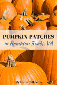 Local Pumpkin Patches 2017 Big List Of Pumpkin Patches In Hampton Roads Updated List