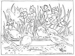 spring coloring sheets spring coloring pages printable gravityfreeradio com