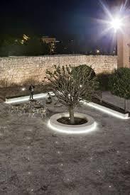 Home Design Plaza Mayor by 66 Best Square Trees Images On Pinterest Landscape Design