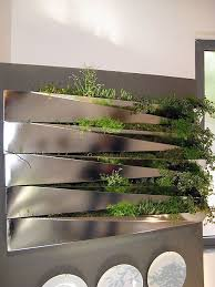 kitchen wall herb garden perfect fresh herbs in an elegant wall