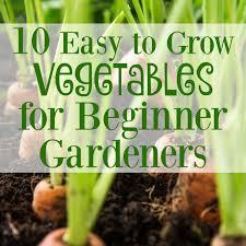 10 easy to grow vegetables for beginner gardeners graceful