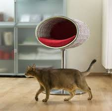 modern cat beds rondo by meyer digsdigs