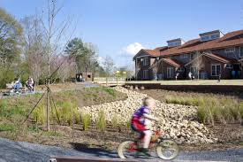 native pond plants new apartment homes prove public housing can be sustainably designed