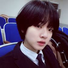 lee joo young w a i f u pinterest short hair hair