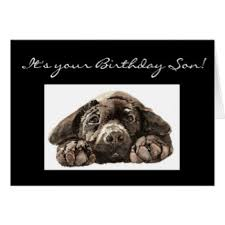 funny sons birthday cards u0026 invitations zazzle co uk
