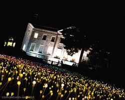 Cheekwood Botanical Garden Museum Of Art Live The Fine Life U2013 Bruce Munro Lights Up The Night At Cheekwood