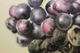 how to paint grapes purpose of hard and soft edges in oil painting