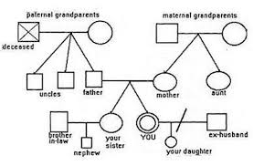 6 best images of 4 generation genogram example examples of