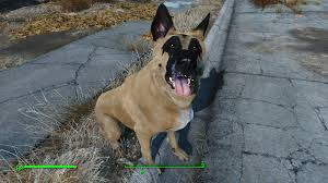 belgian shepherd victoria sonja the malinois dogmeat v1 0 at fallout 4 nexus mods and