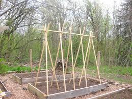 Trellis Poles Bamboo Teepee Trellis Defilenidees Com