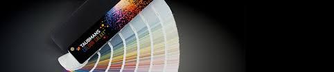 taubmans colour centre explore colours