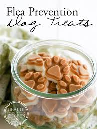 recipe for dog treats flea prevention dog treats 2 ingredients grain free