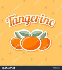 retro tangerine title on pale orange stock vector 484661263