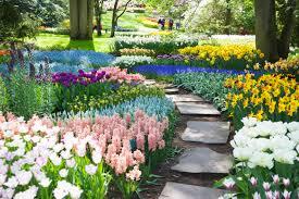 immagini di giardini fioriti keukenhof il giardino fiorito pi禮 grande al mondo fito