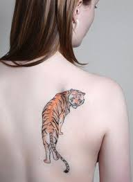 39 exciting tiger designs creativefan