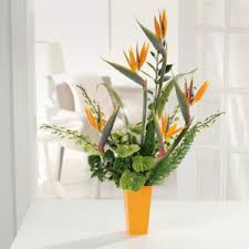 summer flowers chicago florists flowers chicago il designs by