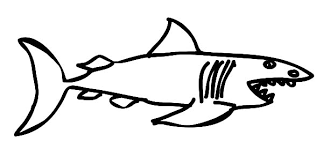 don lino white shark shark tale coloring pages