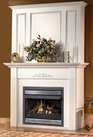 fireplace units gallery image seniorhomes binhminh decoration