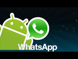 apk whatsapp whatsapp apk 720p