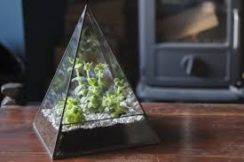 original pyramid terrarium the glass gardener
