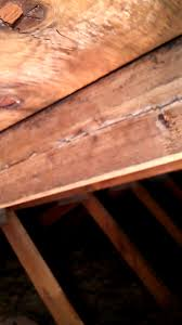 roof worried about cracked rafters in house built 1985 home