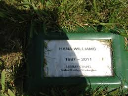 temporary grave markers hana s fund hana s grave marker light of day stories