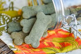 recipe for dog treats breath freshening dog treats grain free greenies