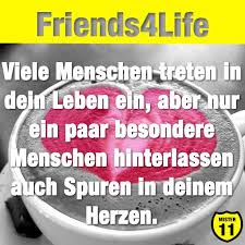 freunde fürs leben sprüche über freundschaft freunde fürs leben