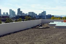 denver initiative 300 should city mandate green roofs to reduce