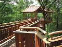 Tree House Designs - Ideas for Treehouse for Kids - Popular Mechanics