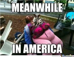 Meanwhile In America Meme - meanwhile in america by anonymousginger meme center