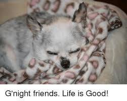 Life Is Good Meme - g night friends life is good meme on astrologymemes com