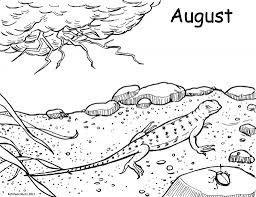 4 original lizard coloring pages ngbasic com