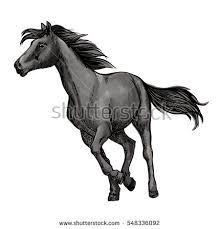 Black Mustang Horse Pictures Horse Wild Stallion Running Gallop Jumping Stock Vector 574478371