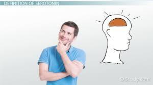 what is psychoneuroimmunology definition u0026 impact video