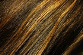 hair color high light how to highlight your hair with a cap and then lowlight it with a