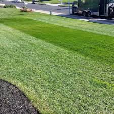 Green Shades by Shades Of Green Lawn Service Home Facebook