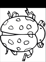 100 ideas insect coloring pages pdf emergingartspdx