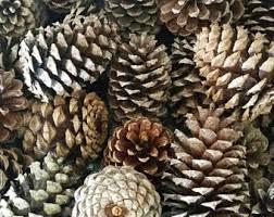 pinecone centerpiece etsy