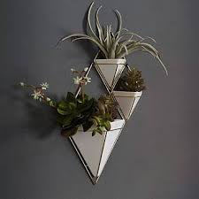 Hanging Wall Planters Best 25 Indoor Wall Planters Ideas On Pinterest Herb Wall